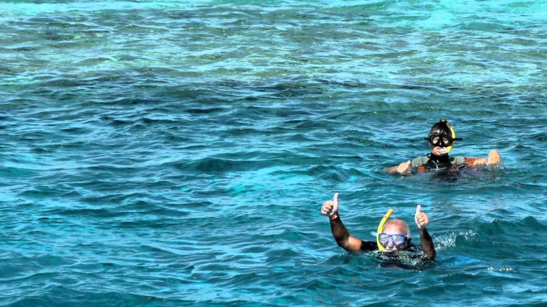 Excursies Egypte DIVING TOURS FROM MARSA ALAM